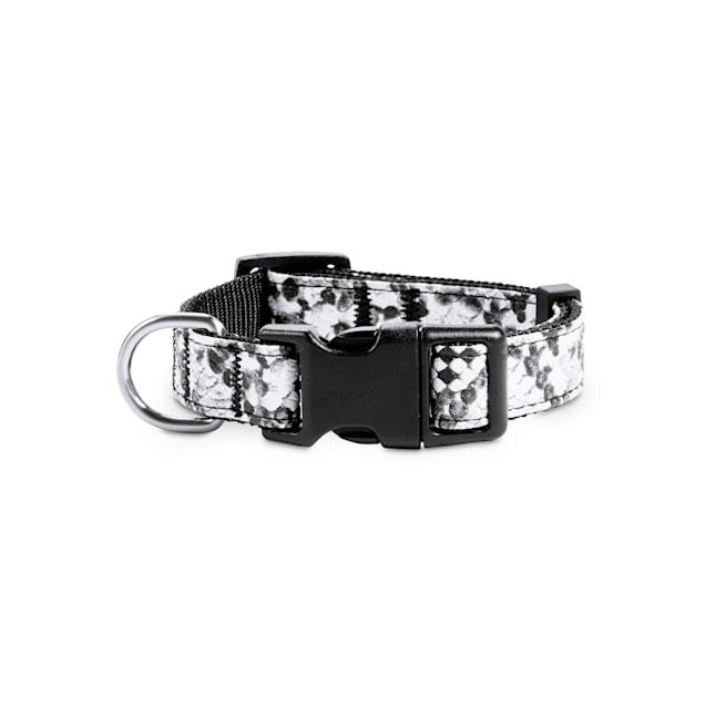 Bond & Co. Black & White Snake-Print Dog Collar, Small - Carousel image #1