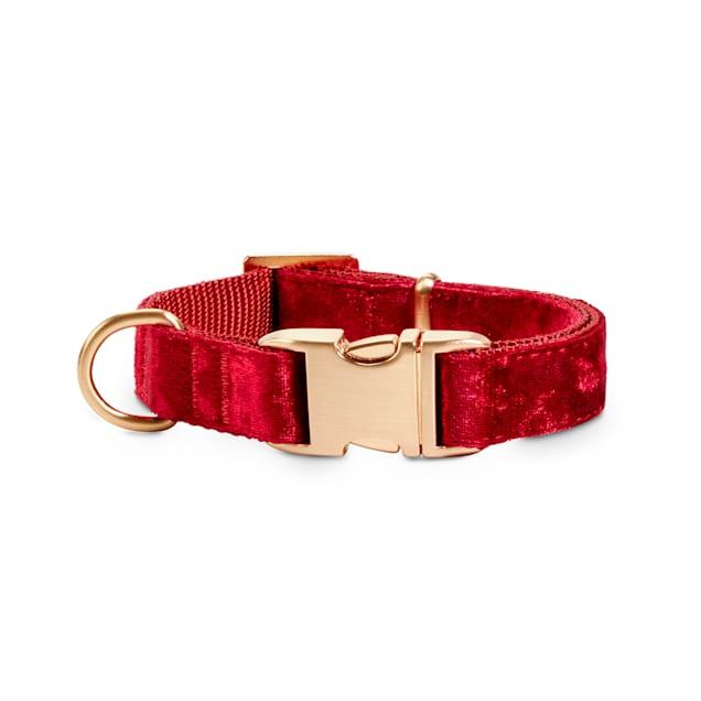 Bond & Co. Red Velvet Dog Collar, Small - Carousel image #1