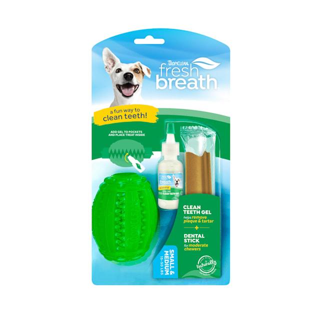 TropiClean Fresh Breath Fresh N Fun Dental Chew Toy for Small & Medium Dogs - Carousel image #1