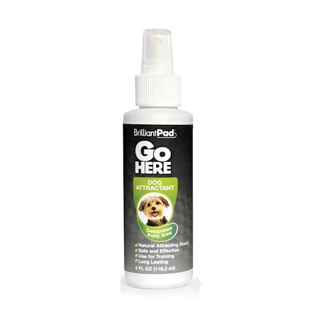 Brilliant Pad GO HERE Dog Attractant, 4 fl. oz. - Carousel image #1