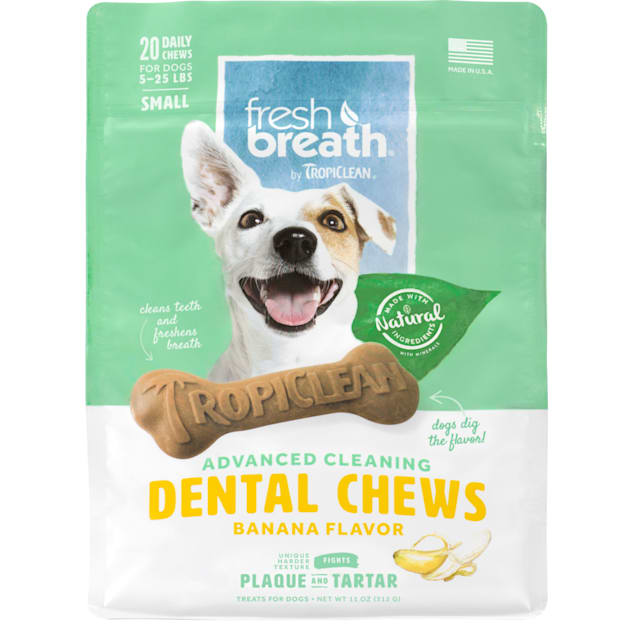 Fresh Breath by TropiClean Dental Care Banana Flavored Dental Chews for Dogs 5-25 lbs., 11 oz., Count of 20 - Carousel image #1
