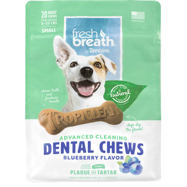 Fresh Breath by TropiClean Dental Care Blueberry Flavored Dental Chews for Dogs 5-25 lbs., 11 oz., Count of 20 - Carousel image #1