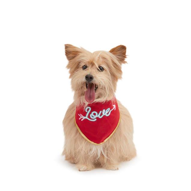 Where/'s The Love Bro Valentine/'s Day Dog Bandana