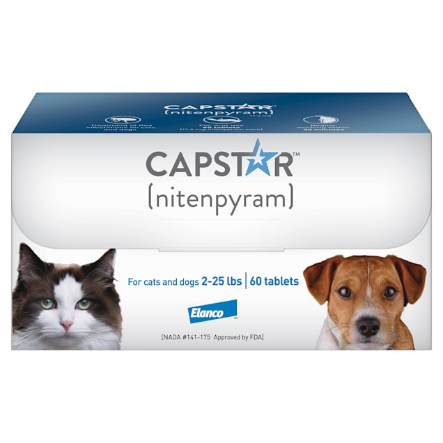 Capstar Flea Tablets for Dogs and Cats 2-25 lbs., Count of 60 - Carousel image #1