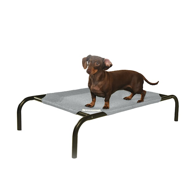"""Coolaroo Grey Elevated Dog Bed, 34.75"""" L X 21.5"""" W X 8"""" H - Carousel image #1"""
