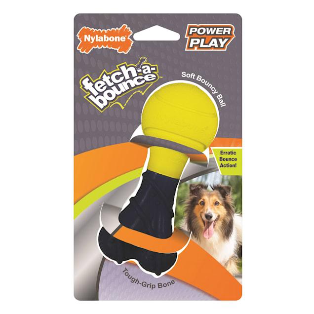 Nylabone Power Play Fetch-a-Bounce Dog Toy - Carousel image #1