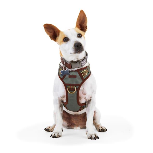 Reddy Green Canvas Dog Harness, Medium - Carousel image #1