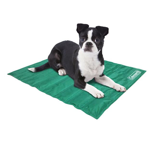 """Coleman Green Cooling Mat for Dogs, 18"""" L X 12"""" W - Carousel image #1"""
