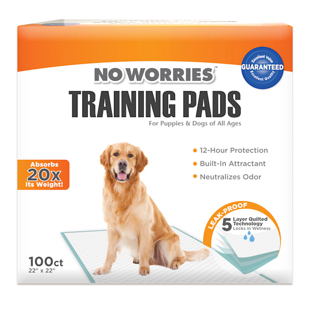Four Paws No Worries Training Pads for Dogs, Count of 100 - Carousel image #1