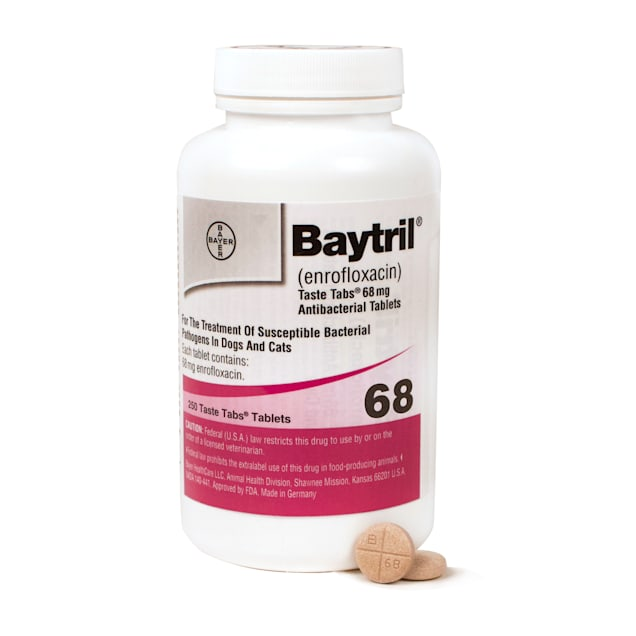 Baytril 68 mg, Single Taste-Tab Tablet - Carousel image #1