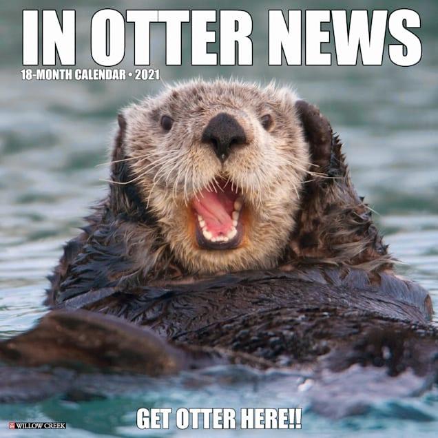 Willow Creek Press In Otter News 2021 Calendar, Large - Carousel image #1