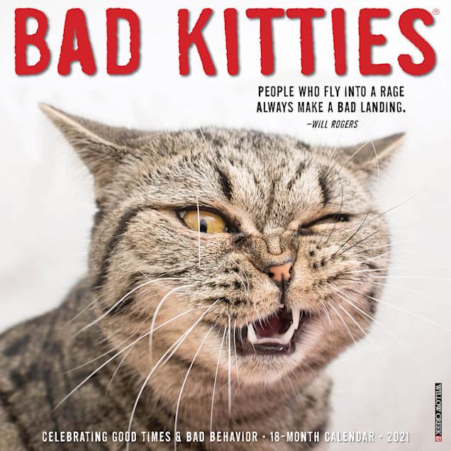 Willow Creek Press Bad Kitties 2021 Calendar, Large - Carousel image #1