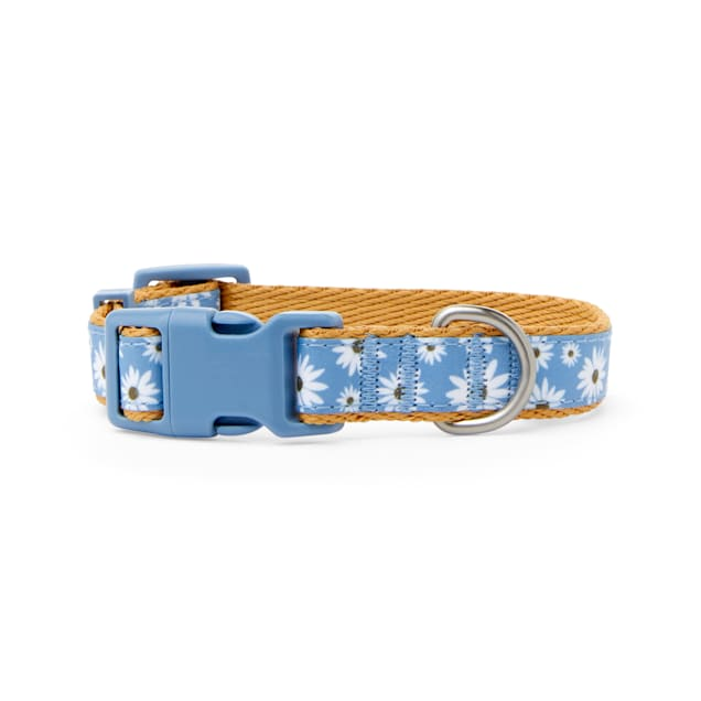 Bond & Co. Started As A Bottle Recycled & Reinvented Happy Daisies Dog Collar, Small - Carousel image #1