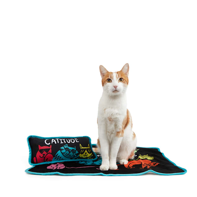 BOBS from Skechers Cattitude Cat Throw and Pillow Set - Carousel image #1