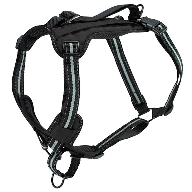 PetSafe Walk-Along Outdoor Dog Harness, Small - Carousel image #1