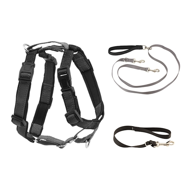 PetSafe 3 in 1 Harness with Two Point Control Dog Leash, Small - Carousel image #1