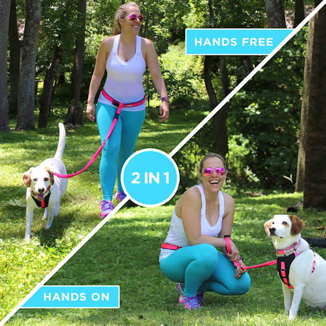 Pawtitas Reflective Blue Running Handsfree Puppy or Dog Leash Padded Handle, 5 ft. - Carousel image #1