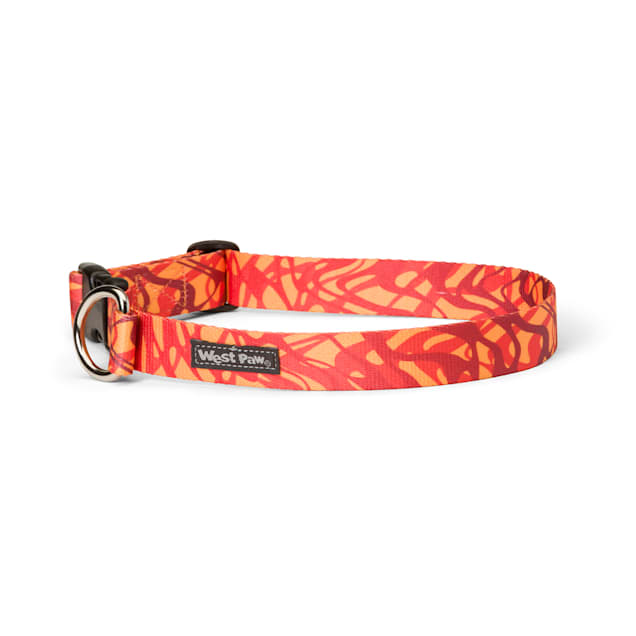 West Paw Outings Collar in Zebra Fire for Dogs, Small - Carousel image #1