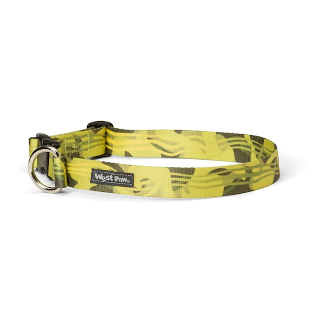 West Paw Outings Collar in Green Groove for Dogs, Small - Carousel image #1
