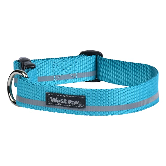 West Paw Strolls Collar in Reflective Turquoise for Dogs, Small - Carousel image #1