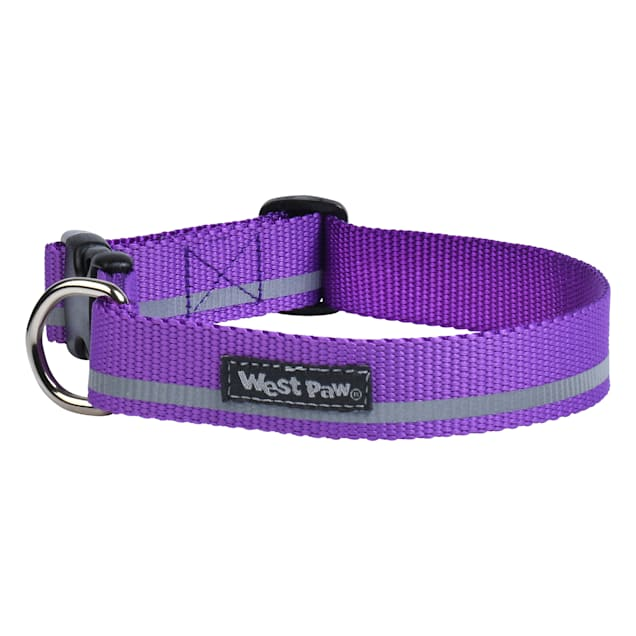 West Paw Strolls Collar in Reflective Dewberry for Dogs, Small - Carousel image #1