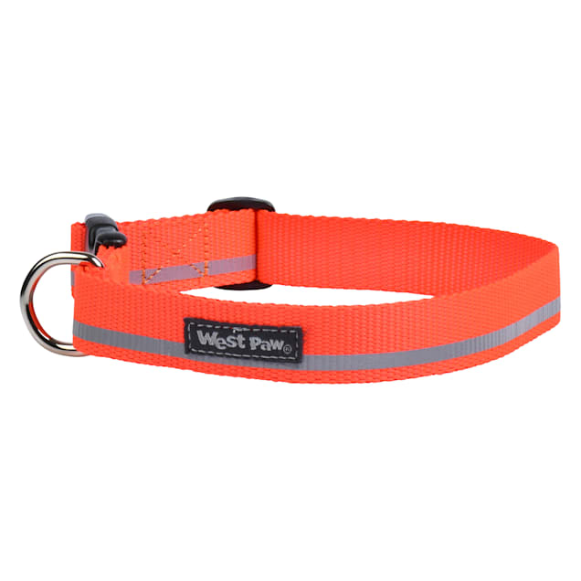 West Paw Strolls Collar in Reflective Neon Orange for Dogs, Small - Carousel image #1