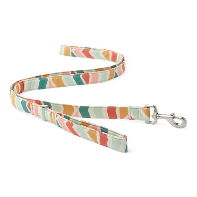 YOULY The Wanderer Rainbow Striped Dog Leash, 6 ft. - Carousel image #1