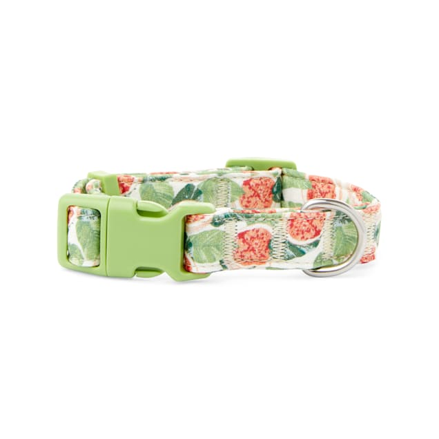 YOULY The Wanderer Green & Multicolor Go Fig-ure Dog Collar, Small - Carousel image #1