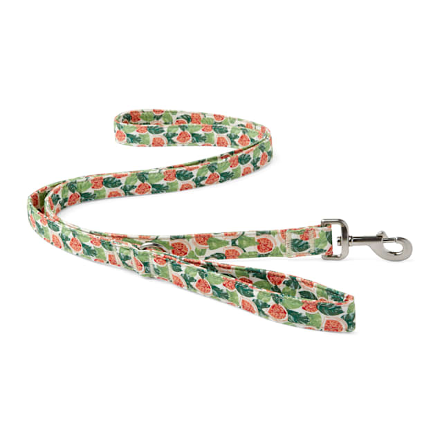 YOULY The Wanderer Green & Multicolor Go Fig-ure Dog Leash, 6 ft. - Carousel image #1