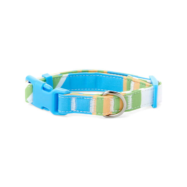 YOULY The Champion Multicolor Striped Dog Collar, Small - Carousel image #1