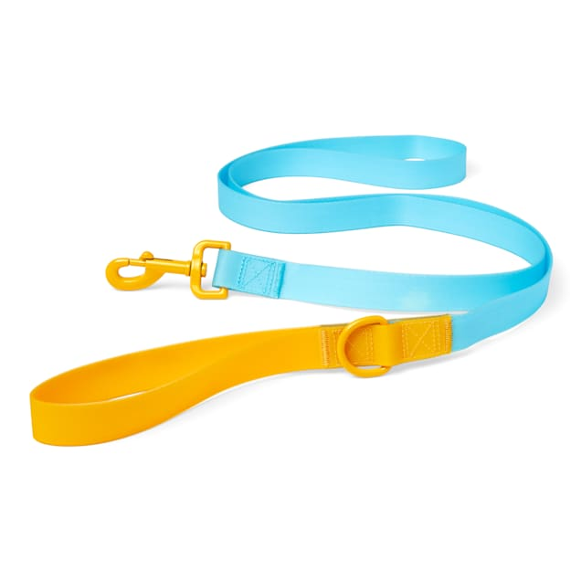 YOULY The Extrovert Water-Resistant Blue & Yellow Colorblocked Dog Leash, 6 ft. - Carousel image #1