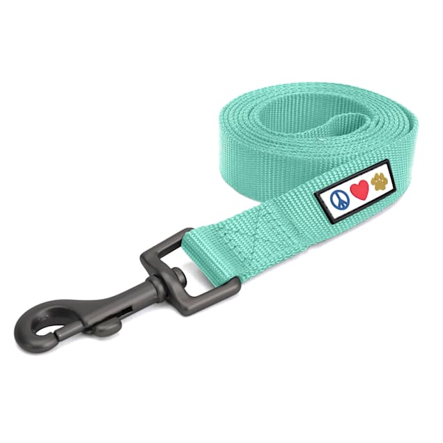 Pawtitas Solid Teal Puppy or Dog Leash, Small, 6 ft. - Carousel image #1
