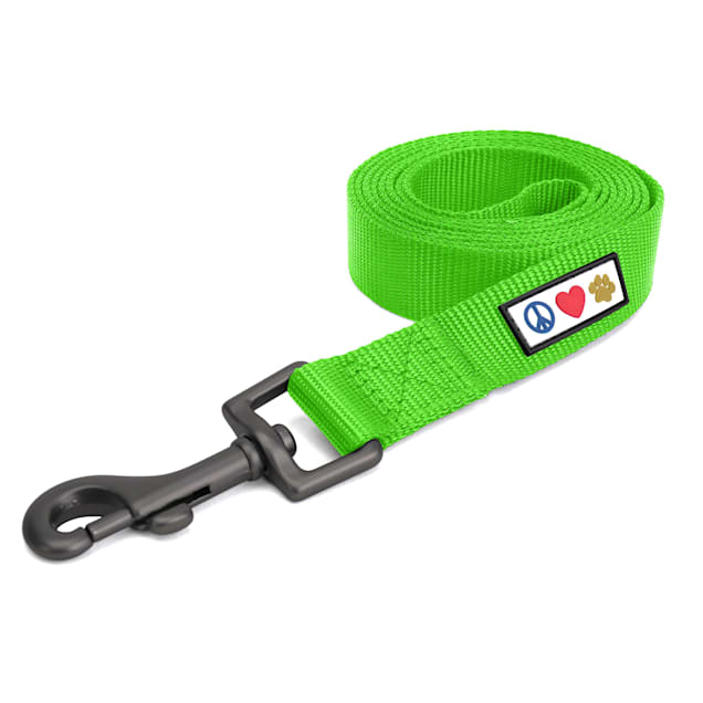 Pawtitas Solid Green Puppy or Dog Leash, Small, 6 ft. - Carousel image #1