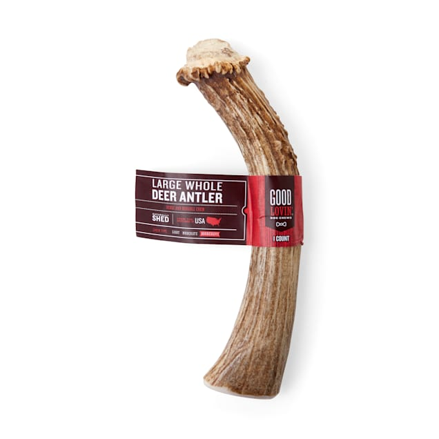 Good Lovin' Naturally Shed Whole Deer Antler Dog Chew - Carousel image #1