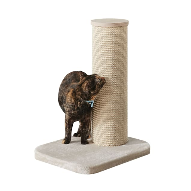 """Two by Two Maple 1 Level Beige Cat Tree, 18.5"""" L X 15.4"""" W X 24.4"""" H - Carousel image #1"""
