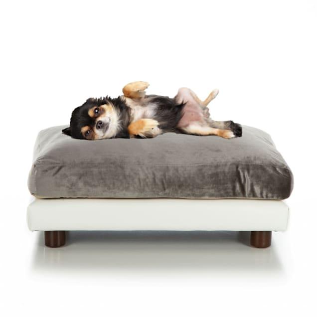 "Club Nine Pets Pewter Milo Orthopedic Dog Bed, 16"" L X 18"" W - Carousel image #1"