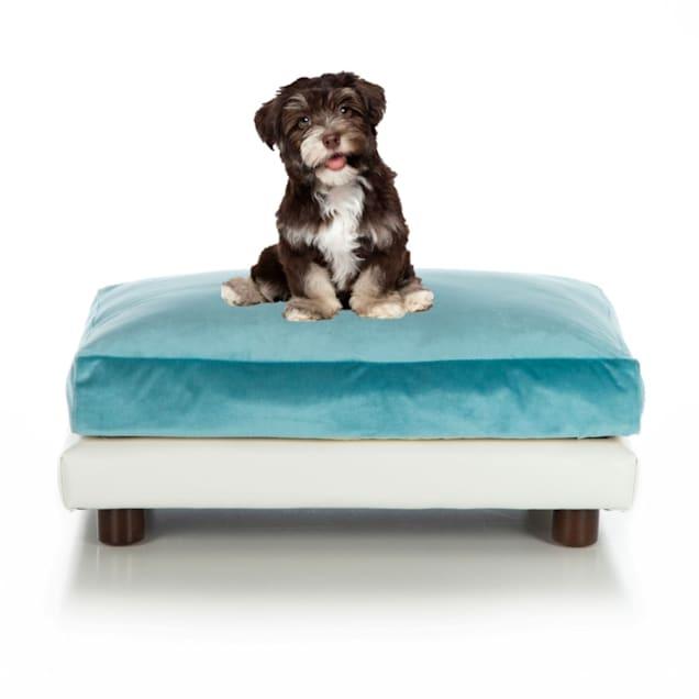 """Club Nine Pets Aqua Milo Orthopedic Dog Bed, 24"""" L X 34"""" W - Carousel image #1"""