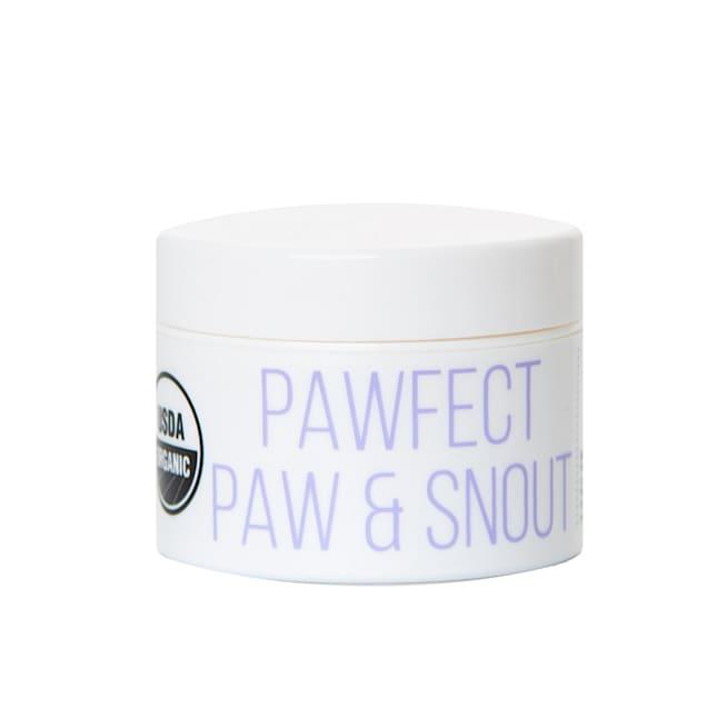 Kibble Pet Pawfect Paw & Snout Soother Dog Balm, 1 fl. oz. - Carousel image #1