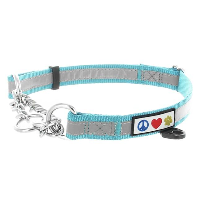 Pawtitas Teal Chain Martingale Dog Collar, Medium - Carousel image #1
