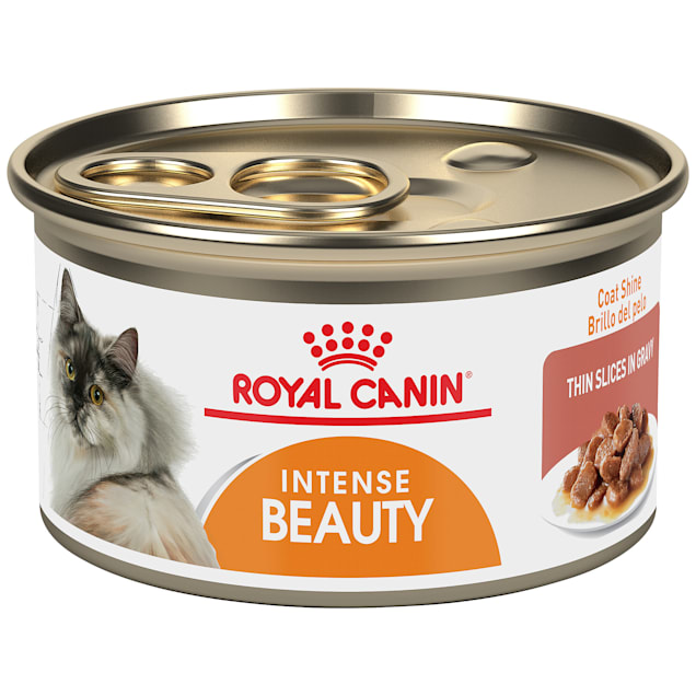 Royal Canin Intense Beauty Thin Slices in Gravy Wet Cat Food for Skin & Coat, 3 oz., Case of 24 - Carousel image #1