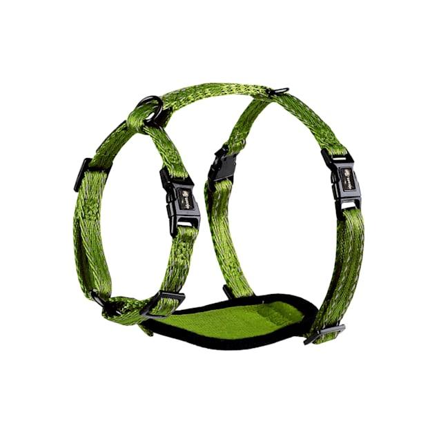 alcott Green Adventure Dog Harness, X-Small - Carousel image #1