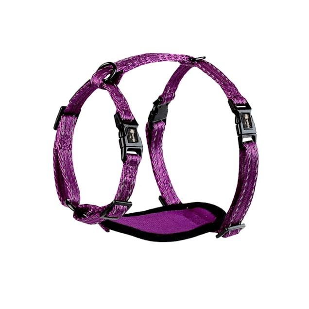 alcott Purple Adventure Dog Harness, X-Small - Carousel image #1