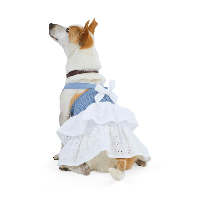 YOULY The Happy-Go-Lucky Chambray & White Eyelet Dog Dress, XX-Small - Carousel image #1