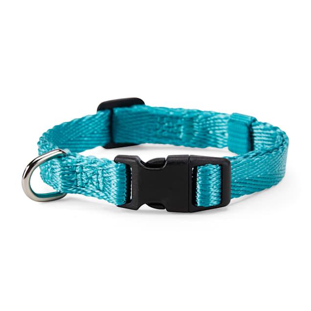 YOULY The Classic Turquoise Webbed Nylon Dog Collar, Small - Carousel image #1