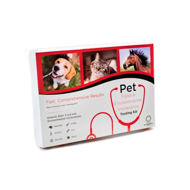 5Strands Pet Food & Environmental Intolerance Testing Kit - Carousel image #1