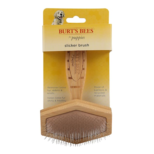 Burt's Bees Puppy Slicker Brush for Small Dogs - Carousel image #1