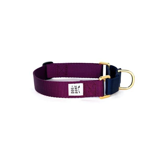 Dog + Bone Purple & Navy Martingale Dog Collar, Small - Carousel image #1