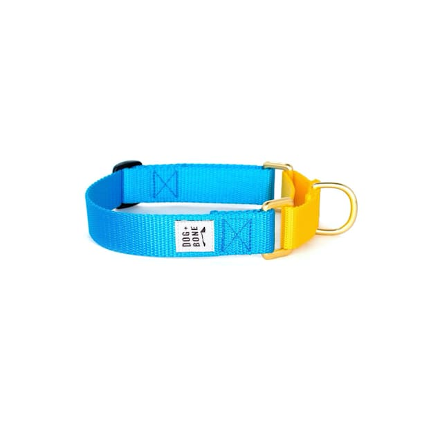 Dog + Bone Blue & Yellow Martingale Dog Collar, Small - Carousel image #1