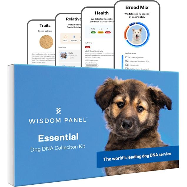 Wisdom Panel Essential Dog DNA Test Kit - Carousel image #1