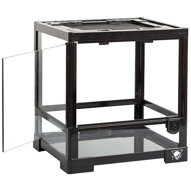 "T-Rex Glass Terrarium, 12"" L X 12"" W X 12"" H - Carousel image #1"